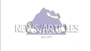 stga news articles